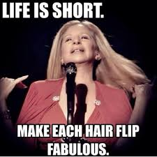 Barbra Streisand Meme - barbramemes barbramemes instagram photos and videos