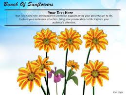 garden powerpoint templates backgrounds presentation slides ppt