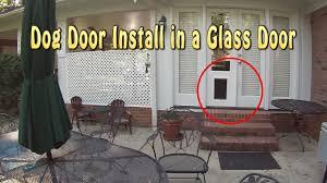 sliding glass door with doggie door installing a dog door into glass french doors youtube