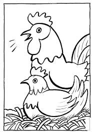 coloring page of a chicken coloring pages chickens chicken coloring book together with chicken