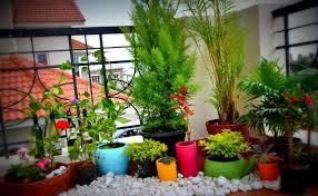 6 diy small space gardens