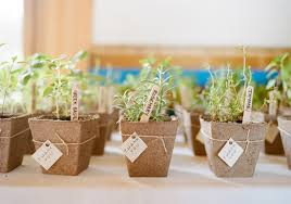 eco friendly wedding favors fabulous wedding favors for eco friendly couples our organic wedding