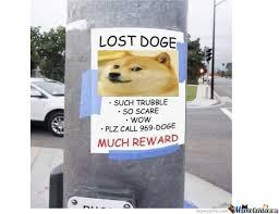 Doge Original Meme - lost doge by joey degreef 18 meme center