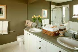 top bathroom paint colors ideas bathroom ideas paint lovely most