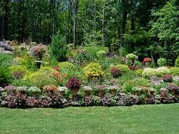 terraced backyard landscaping ideas landscape a slope great color combo and love the dry creek bed