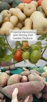 1486 best gardening images on pinterest gardening vegetable