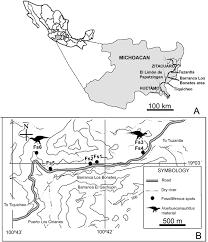 Michoacan Map Huehuecanauhtlus Tiquichensis A New Hadrosauroid Dinosaur