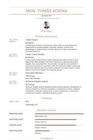 it analyst resume sample senior business analyst resume free pdf