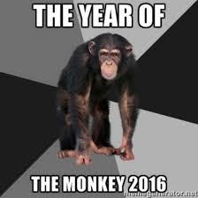 Funny Monkey Memes - year of the monkey memes best funny memes heavy com