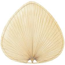 fanimation caruso ceiling fan fanimation caruso ceiling fan blade set wayfair