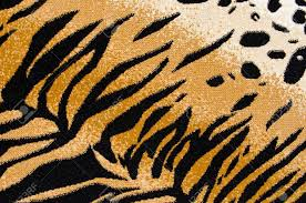 Rug Binding Cheetah Print Rug Binding Med Art Home Design Posters