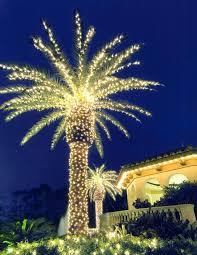 lighted palm tree led lighted coconut tree tree palm tree lights