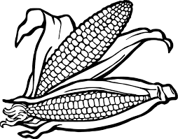 vegetable corns coloring page wecoloringpage