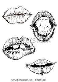 cracked open walnut sketch hand drawn stock vector 626877926