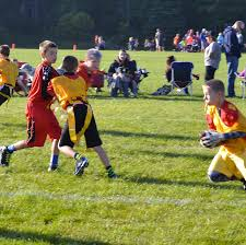 batavia youth football
