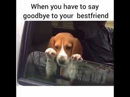 Funny Best Friends Memes - funny memes when you have to say goodbye to your best friend