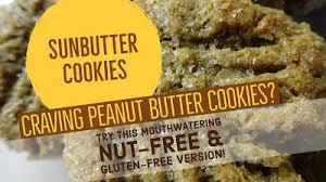Sunbutter Cookie Recipe Nut Free Alternative To Peanut Butter