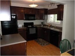Black Appliances Kitchen Design - unique what color kitchen cabinets go with black appliances