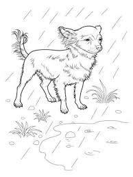 coloriage chiens à imprimer