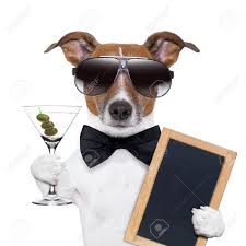 martini toast party dog toasting with a martini glass with olives stock photo
