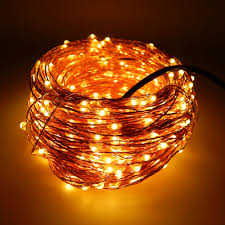 Copper String Lights by Warm White Led Fairy Lights Warm White Led Fairy Lights Suppliers