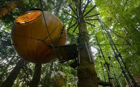 find your inner self at the free spirit spheres in vancouver