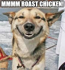 Hipster Dog Meme - list of synonyms and antonyms of the word hungry dog meme