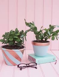 the 25 best copper planters ideas on pinterest mini plants who