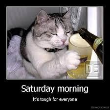 Saturday Morning Memes - saturday morning memes gifs 3 quotesbae
