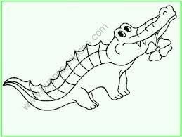 imagenes de animales carnivoros para imprimir dibujos de animales salvajes para colorear