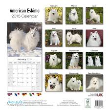 american eskimo dog intelligence american eskimo dog calendar 2017 dog breed calendars 2016