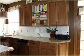 1960s Kitchen by Awesome Kitchen Cabinets Without Doors Ideas Amazing House