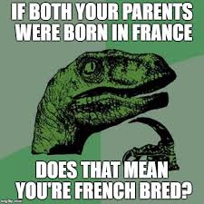 What Does Meme Mean In French - philosoraptor meme imgflip