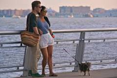 Image result for good dating ideas in nyc
