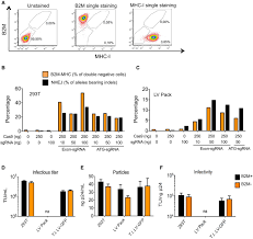 genome editing for scalable production of alloantigen u2010free
