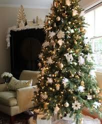 brown christmas tree image classic fraser fir christmas tree tree classics