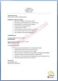 Sample Flight Attendant Resume Cover Letter Resume Examples For Flight Attendant Resume Examples