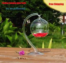 Round Flower Vases Aliexpress Com Buy Hanging Glass Balls Bubble Round Pots Flower