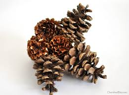 pine cone ornament a link cherished bliss