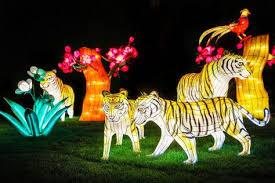 when does the lights at the toledo zoo start toledo zoo luminous nights