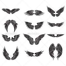 3d and 4d wing designs search email