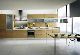 cabinet contemporary kitchen design modern kitchen cabinets