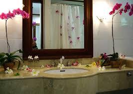 inexpensive bathroom decorating ideas decorations small bathroom decor ideas pinterest half bath