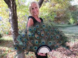 extra large feather fans extra large peacock feather fan for home decor 22 by 47