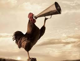 Rooster Meme - create meme rooster rooster rooster cocks