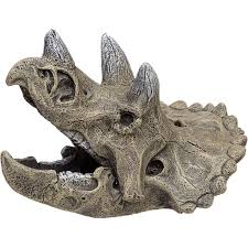 blue ribbon small triceratops skull aquarium ornament petco