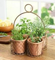 Herb Garden Gift Ideas 42 Best Herbal Baskets Centerpieces And Decor Images On Pinterest