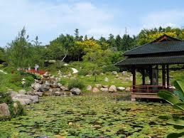 imagenes de jardines japones jardín japonés picture of jardines de mexico jojutla tripadvisor