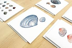 watercolor notecards watercolor shells card set david scheirer watercolors