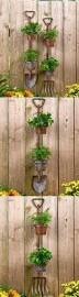 the 25 best indoor pots and planters ideas on pinterest outdoor